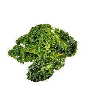 Kale deshidratado de vending
